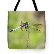 Windswept Dragonfly Tote Bag