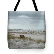 Windswept Lido Beach Florida Tote Bag