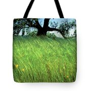 Windswept Poppies Tote Bag