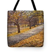 Windswept Walk Tote Bag by Susan Cole Kelly