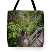 Windy Canyon Great Barrier Island New Zealand Tote Bag