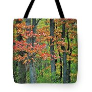 Windy Day Autumn Colors Tote Bag
