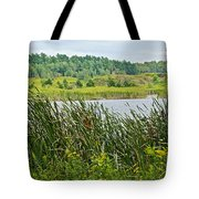 Windy Day In Campground In Saginaw-minnesota Tote Bag
