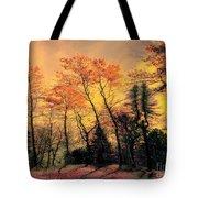 Windy  Tote Bag by Elfriede Fulda