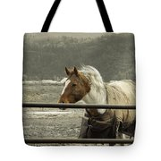 Windy In Mane Tote Bag