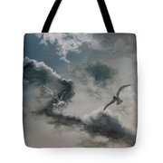 Windy Weather Tote Bag by Diane Kraudelt