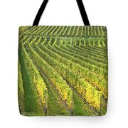 Wine Growing Tote Bag