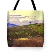 Wine Vineyard In Sicily Tote Bag