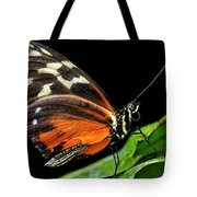 Wing Texture Of Eueides Isabella Longwing Butterfly On A Leaf Ag Tote Bag
