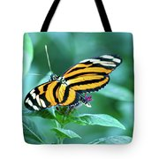 Wing Wonders Tote Bag
