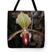 Winged Orchid Tote Bag