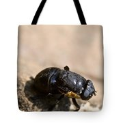 Wingless Fly Tote Bag