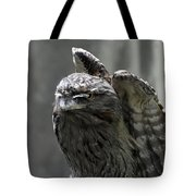 Wings Above A Tawny Frogmouth That Looks Interesting Tote Bag