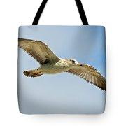 Wings Aloft Tote Bag