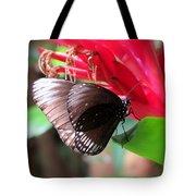 Wings Of Brown - Butterfly Tote Bag