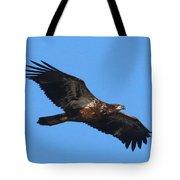 Wings Of Eagles Tote Bag by Karen Lindquist