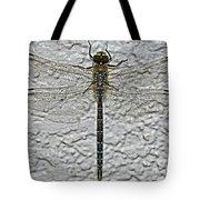 Wings On Stucco Tote Bag