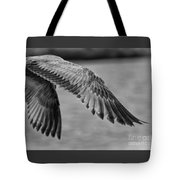 Wings Over Water Beach Pictures Black And White Seagull Tote Bag