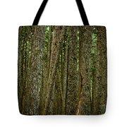 Winner Creek Trail Tote Bag