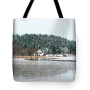 Winter 2 Tote Bag