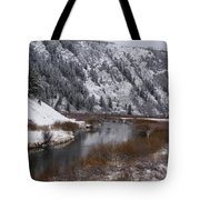 Winter Along The Salt Tote Bag