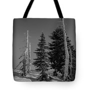 Winter Alpine Trees, Mount Rainier National Park, Washington, 2016 Tote Bag