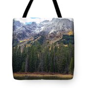 Winter And Fall Mix Tote Bag