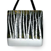 Winter Aspens II Tote Bag