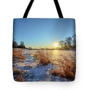 Winter At Mayne's Tote Bag