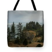 Winter At Oswald West Tote Bag