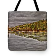 Winter At Pine Lake Tote Bag