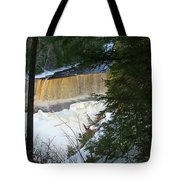Winter At Tahquamenon Tote Bag
