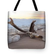Winter Beach Tote Bag