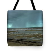 Winter Beach Tote Bag by Debbie Cundy