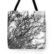 Winter Beckons Tote Bag