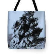 Winter Bench Tote Bag