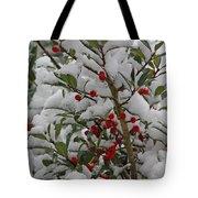 Winter Berries In Watercolor Tote Bag