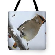 Winter Berry Treat Tote Bag