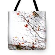 Winter Birds 1 Tote Bag
