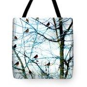 Winter Birds 2 Tote Bag