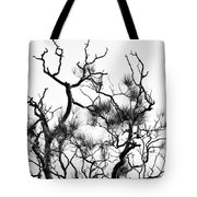 Winter... Black And White Tote Bag