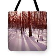 Winter Bling Tote Bag