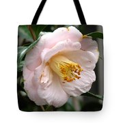 Winter Bloom Tote Bag
