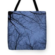 Winter Blue Sky Tote Bag