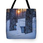 Winter Buckets Tote Bag