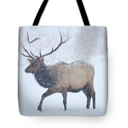 Winter Bull Tote Bag by Mike  Dawson