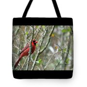 Winter Cardinal Sits On Tree Branch Tote Bag