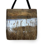 Winter Cattails  Tote Bag