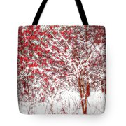 Winter Color  Tote Bag