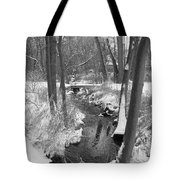 Winter Creek Tote Bag